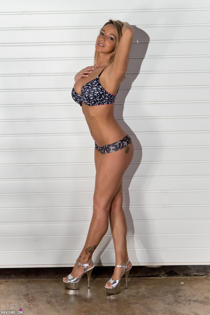 Nikki Sims Ladder Set 5239 751