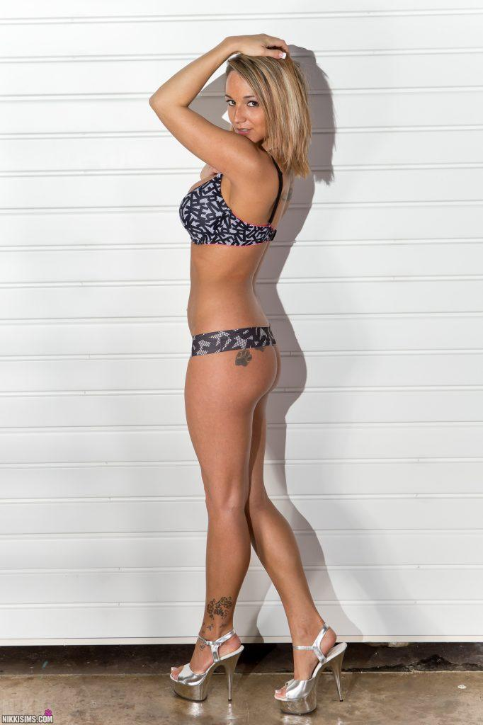 Nikki Sims Ladder Set 5239 752