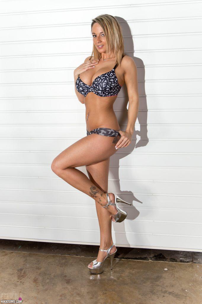 Nikki Sims Ladder Set 5239 753
