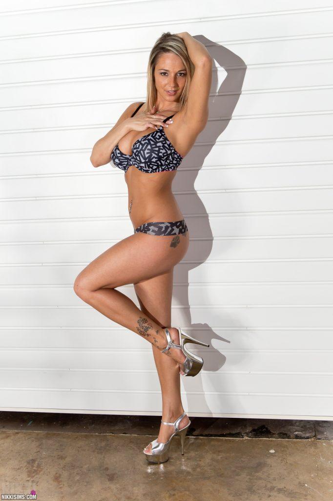 Nikki Sims Ladder Set 5239 754
