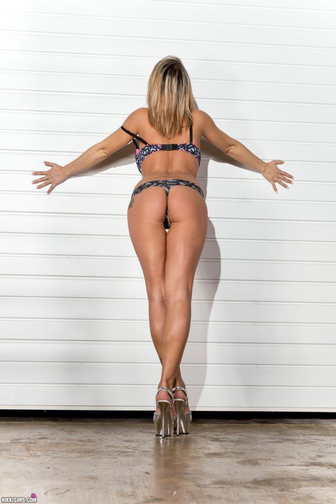 Nikki Sims Ladder Set 5239 764