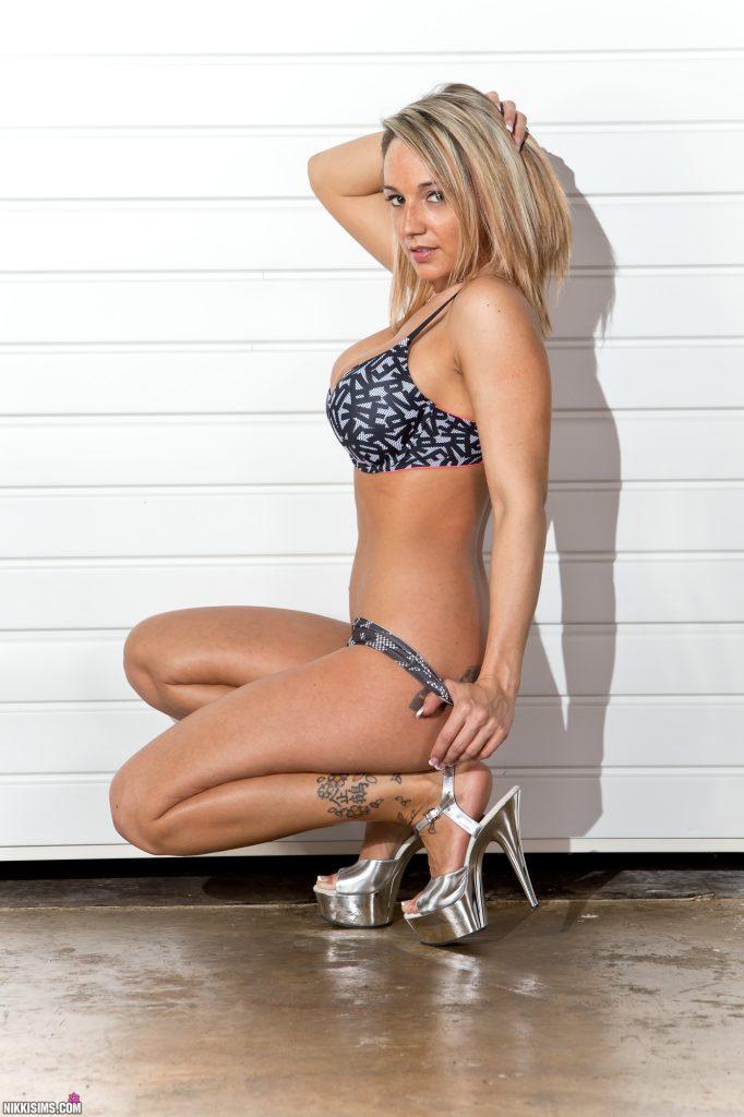 Nikki Sims Ladder Set 5239 771