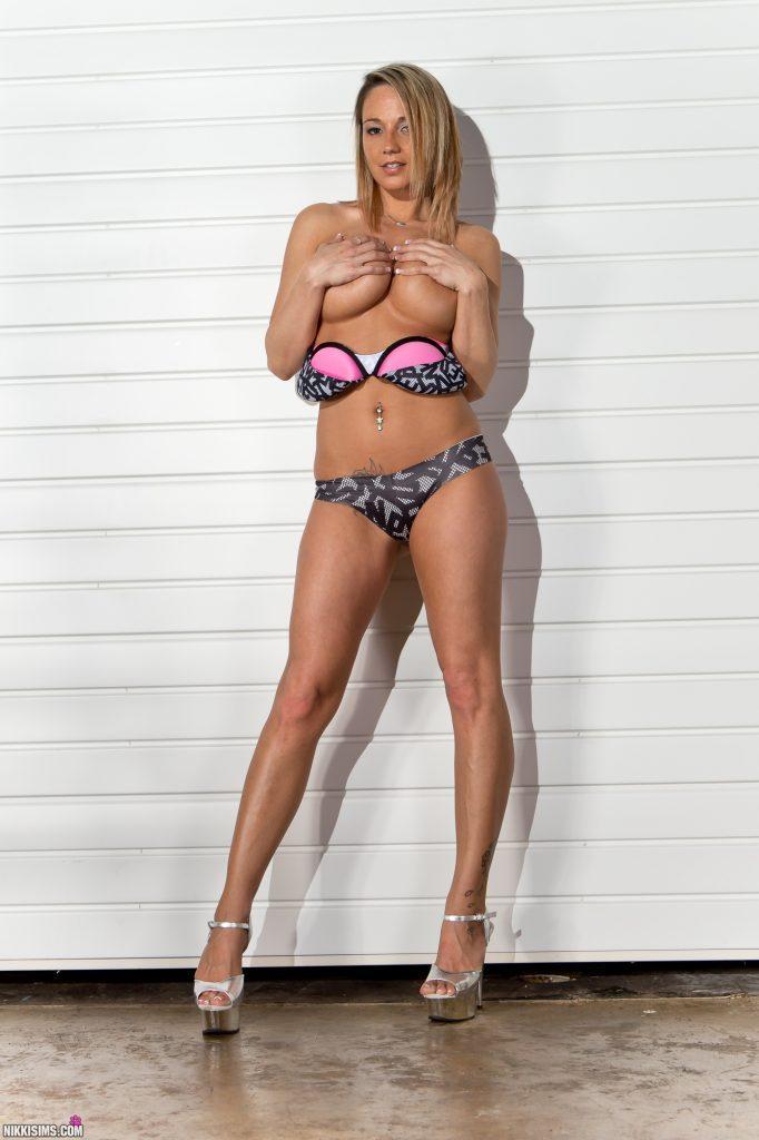 Nikki Sims Ladder Set 5239 784