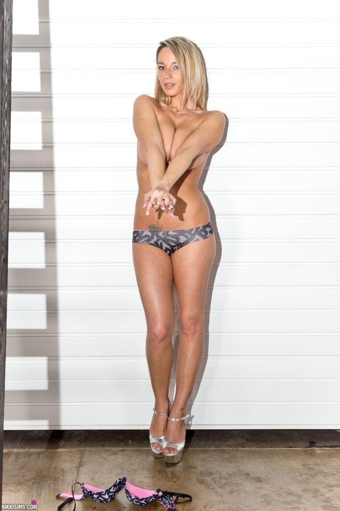 Nikki Sims Ladder Set 5239 796