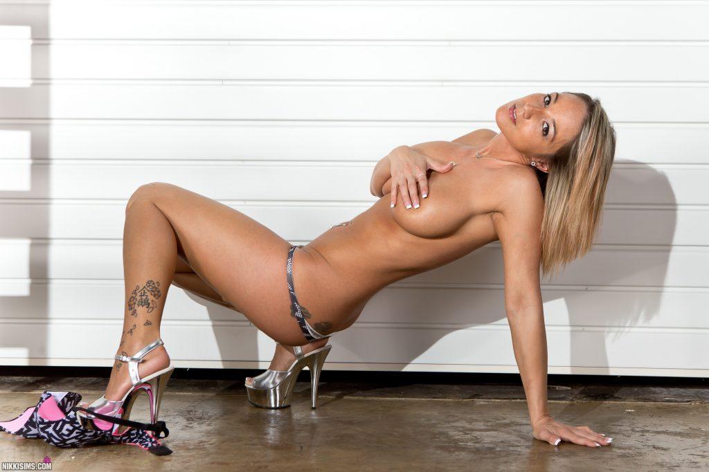 Nikki Sims Ladder Set 5239 807