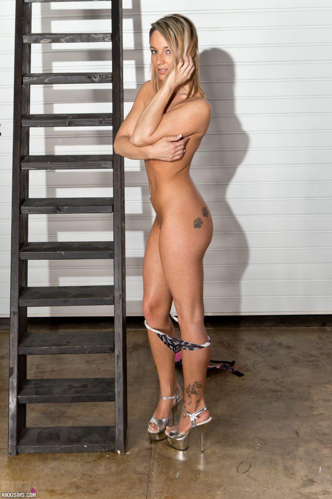 Nikki Sims Ladder Set 5239 828