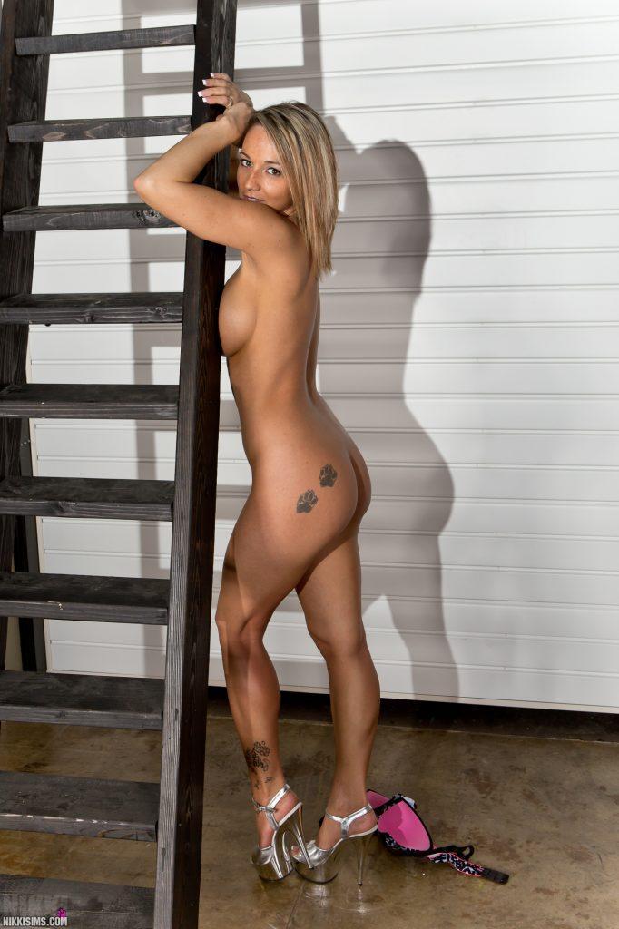 Nikki Sims Ladder Set 5239 851