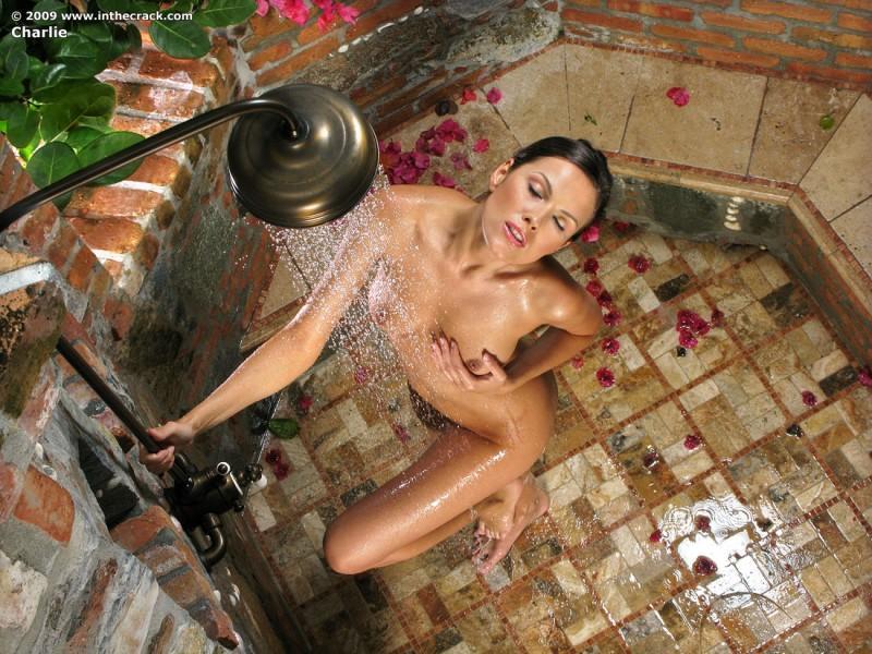 shower beauties 20 800x600