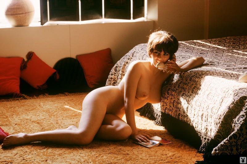 dianne chandler vintage retro playboy 26 800x533